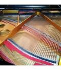 Piano de Cauda Pearl River GP150 PE foto a 3/4