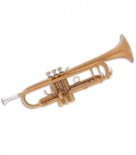 Trompete John Packer JP251SW Si Bemol Dourado Fosco com Estojo
