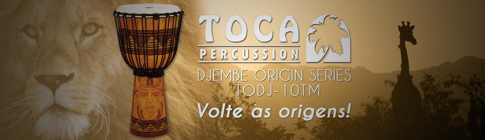 Djembe Toca Percussion TODJ-10TM Origin Series